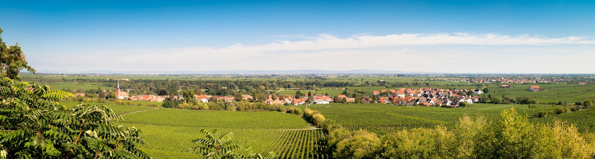 Panoramabild Forst - Rheinland-Pfalz