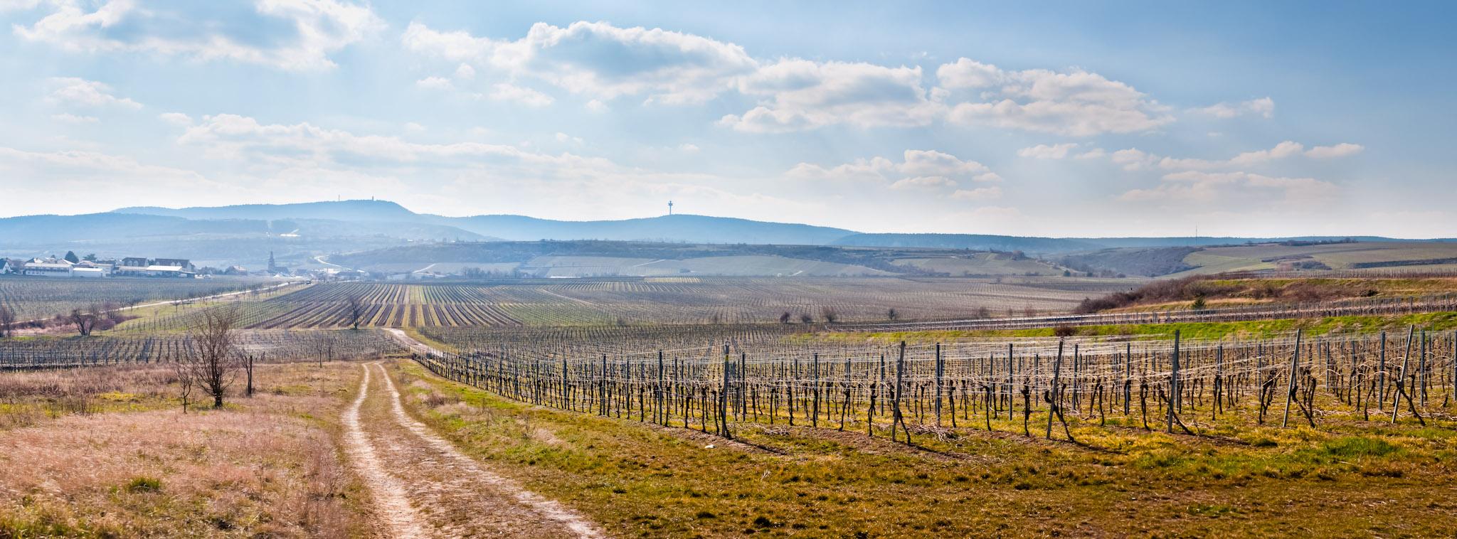 Bild: 20130407 Oschelskopf Panorama