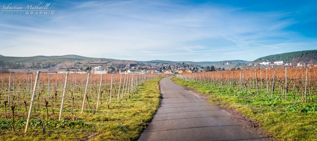 Panorama-Feldweg