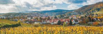 Panorama von Bad Dürkheim, dem Riesenfass und der Haardt im Herbst. 4 Aufnahmen Panorama bearbeitet mit Lightroom 5